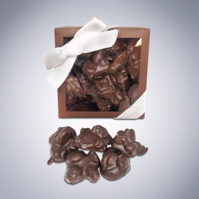 Chocolate Raisin Bites w raisins outside