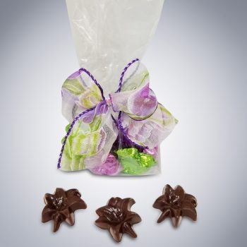 Spring has Sprung Easter Chocolate Gift Bag