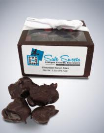 Chocolate Raisin Bites