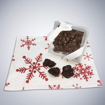 Chocolate Raisin Bites holiday